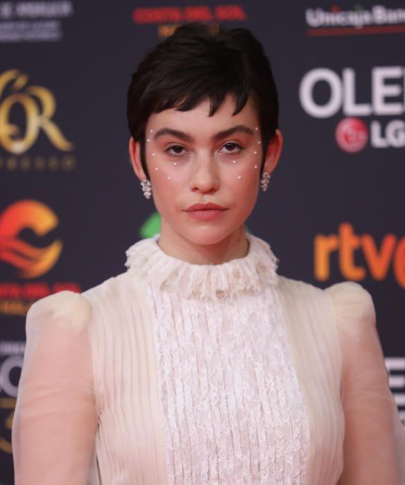 Les imatges de la catifa vermella dels premi Goya 2020