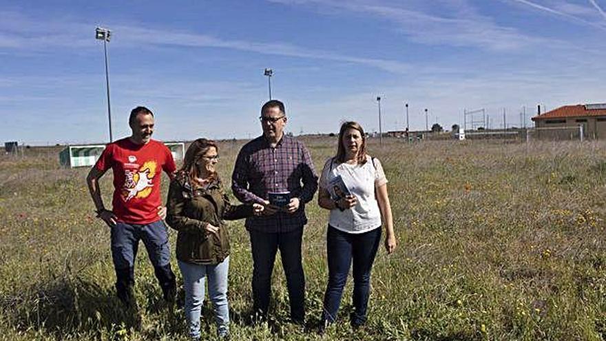 El Partido Popular idea una nueva ciudad deportiva en Los Llanos