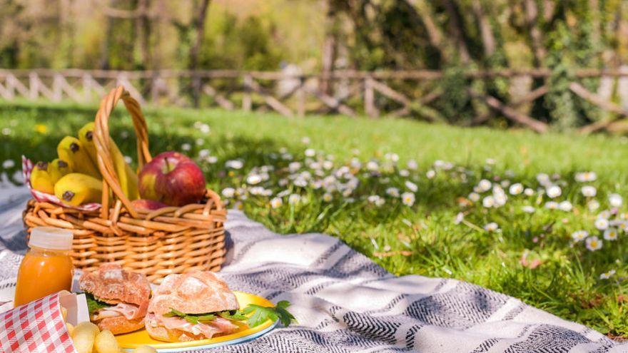 El motivo por el que muchos sufren una intoxicación alimentaria por ir de picnic estos días