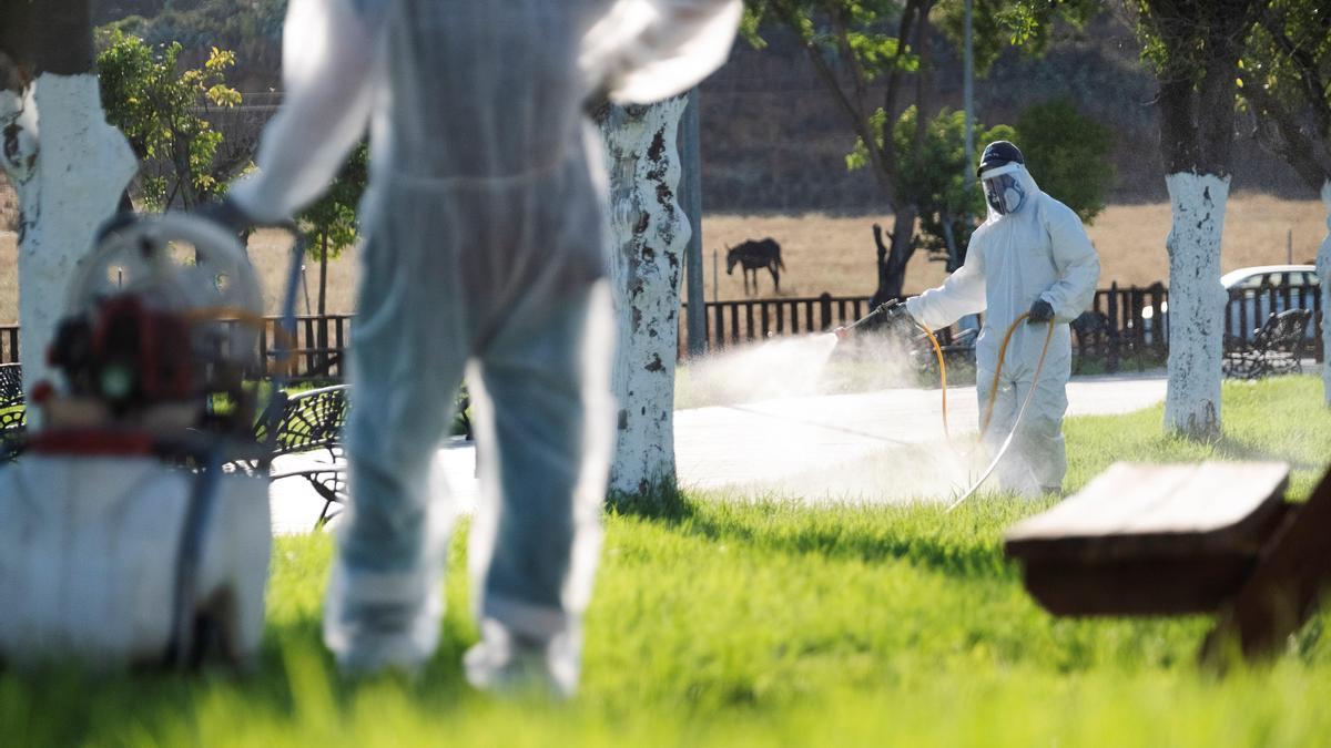 Un operario fumiga en un pueblo de Sevilla por el virus del Nilo.