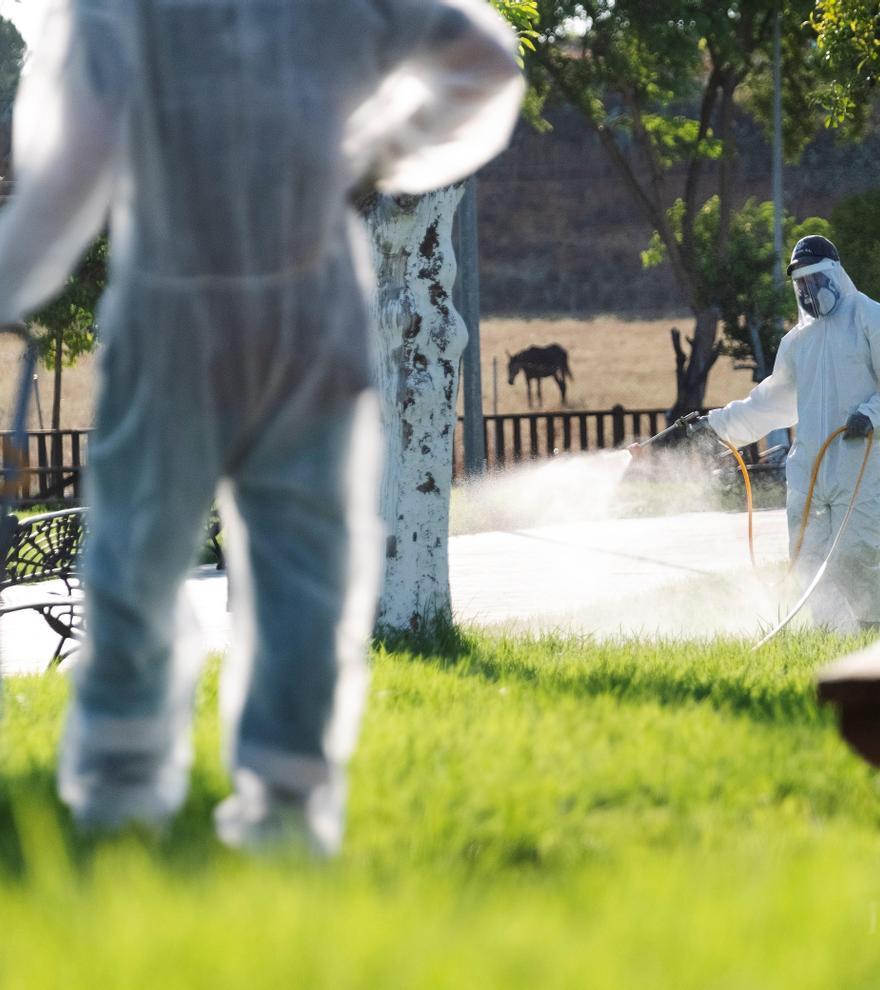 Crean mapas de riesgo que predicen la expansión del virus del Nilo un año antes