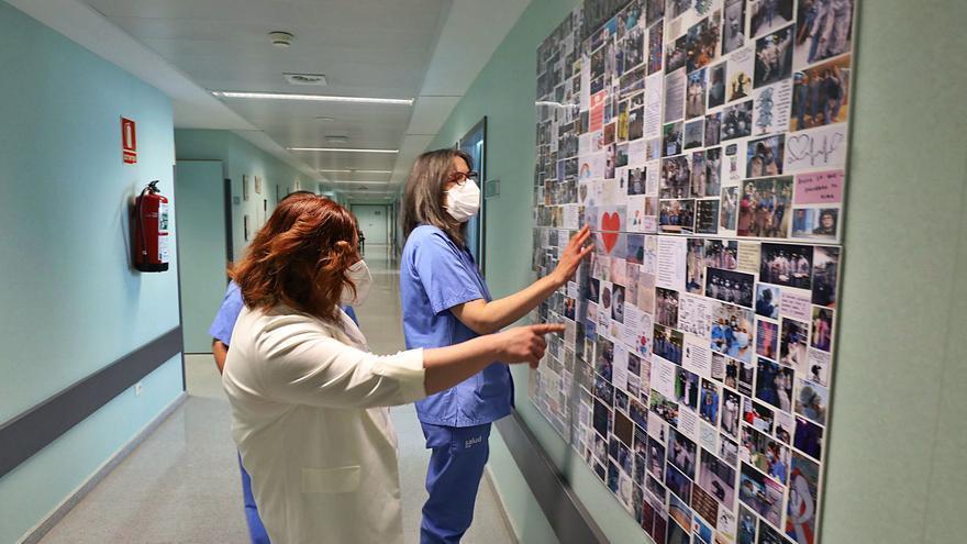 Casi la totalidad de los recién graduados en Enfermería ya tienen trabajo