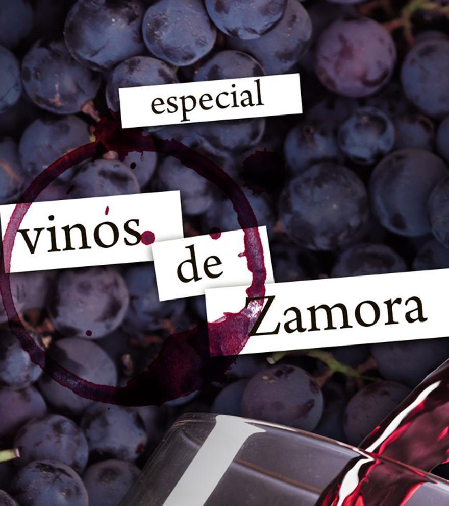 Conoce los mejores vinos de la provincia de Zamora