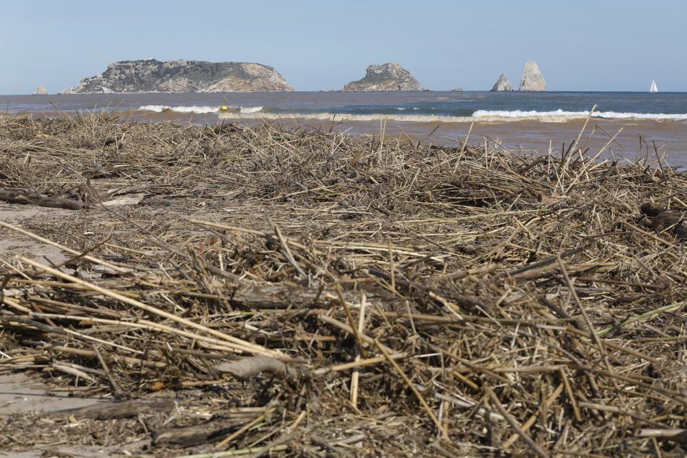 El temporal omple de restes el litoral