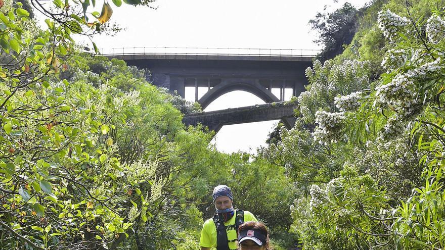 Deportistas en el sendero del Guiniguada a la altura del puente de La Calzada este domingo. | | ANDRÉS CRUZ