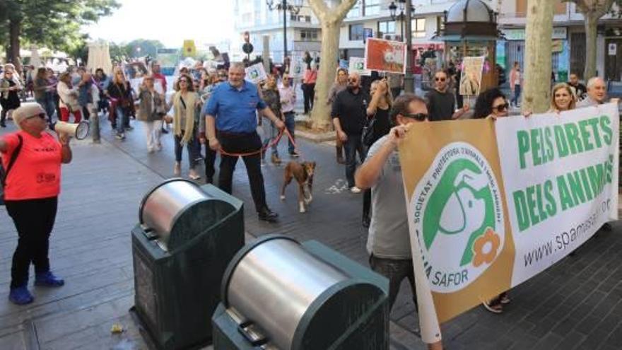 La Protectora vuelve a sorprender  al Ayuntamiento de Gandia