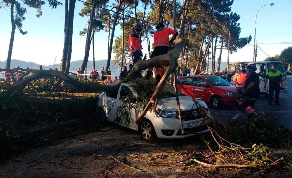 Retirada de la rama caída sobre varios coches en Samil