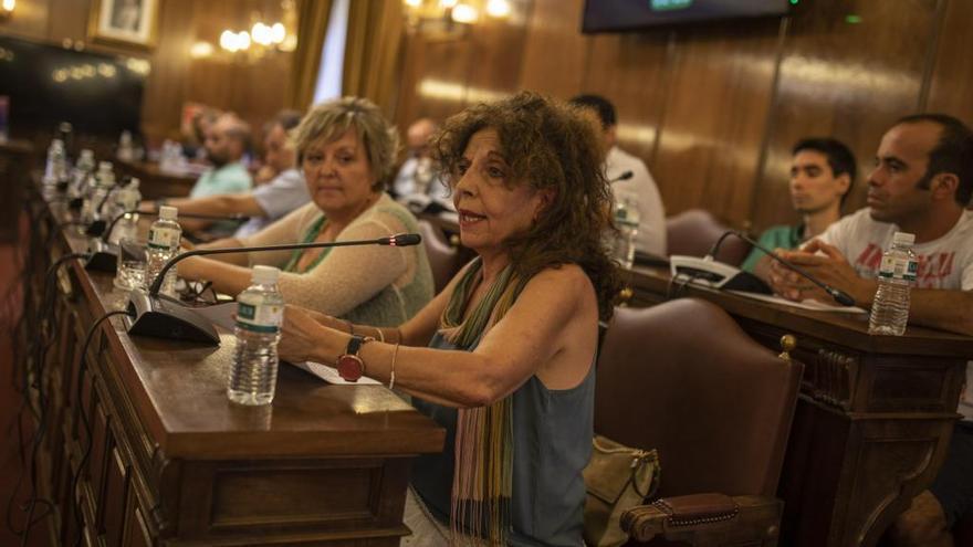 Izquierda Unida propone que la Diputación de Zamora subvencione la contratación de jóvenes en el medio rural