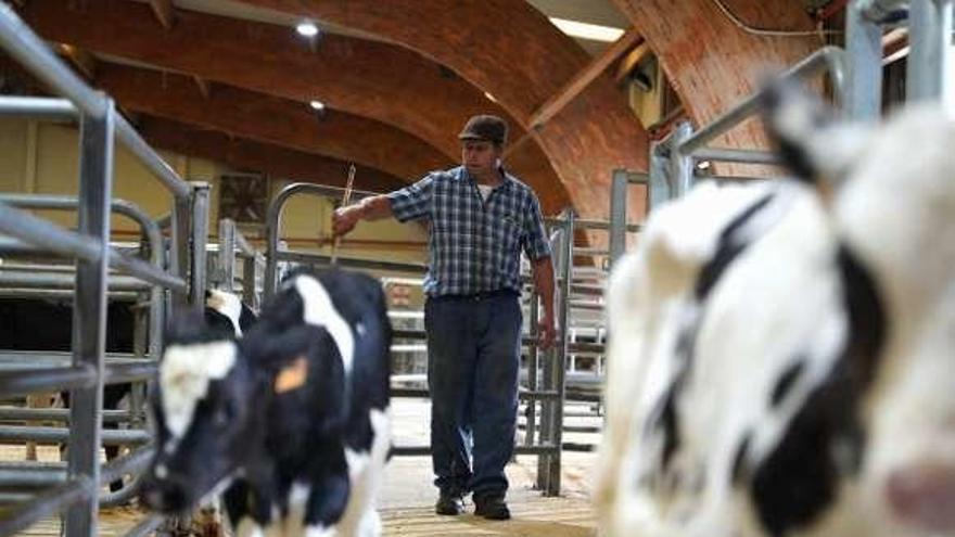 Refugio para dar salida al ganado