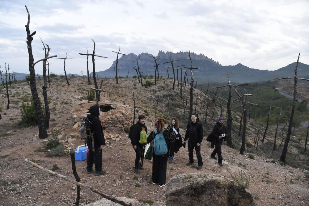 Preparatius per una gigafoto de rècord al bosc de les creus