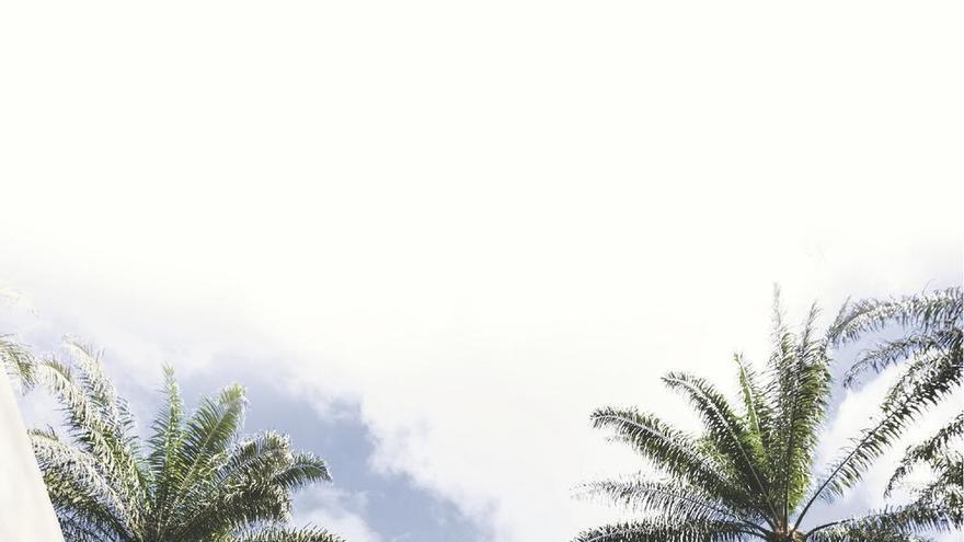 El aceite de palma se cae de la cesta de la compra