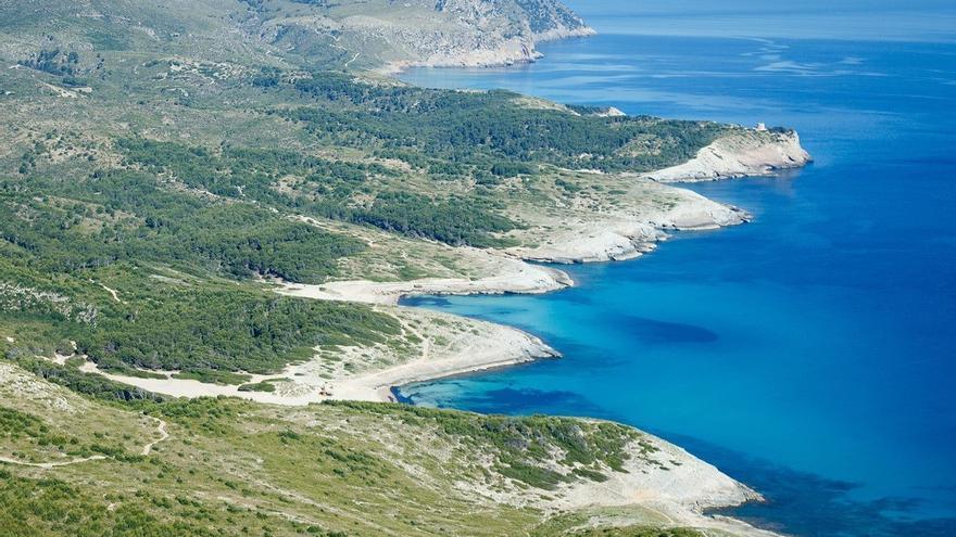 Mallorca, un destino 'pet friendly' para disfrutar también en otoño