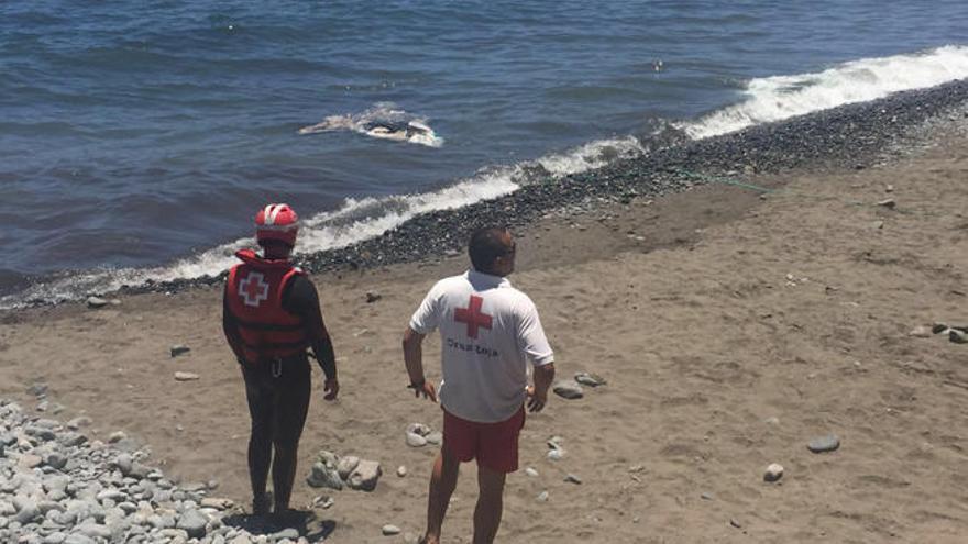 Localizado un delfín sin vida en Bahía Feliz