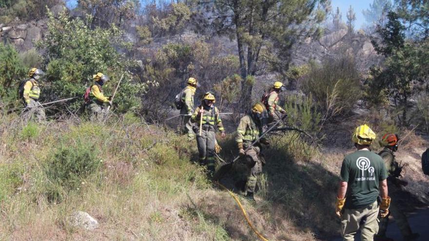 """La unidad contra los incendios: """"Los fuegos por causas naturales son el 2%"""""""
