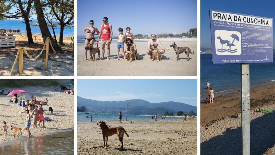 Estas son las playas gallegas donde oirás ladrar este verano