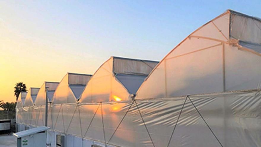 Gonvarri centraliza en Cancienes la innovación en el sector agralimentario