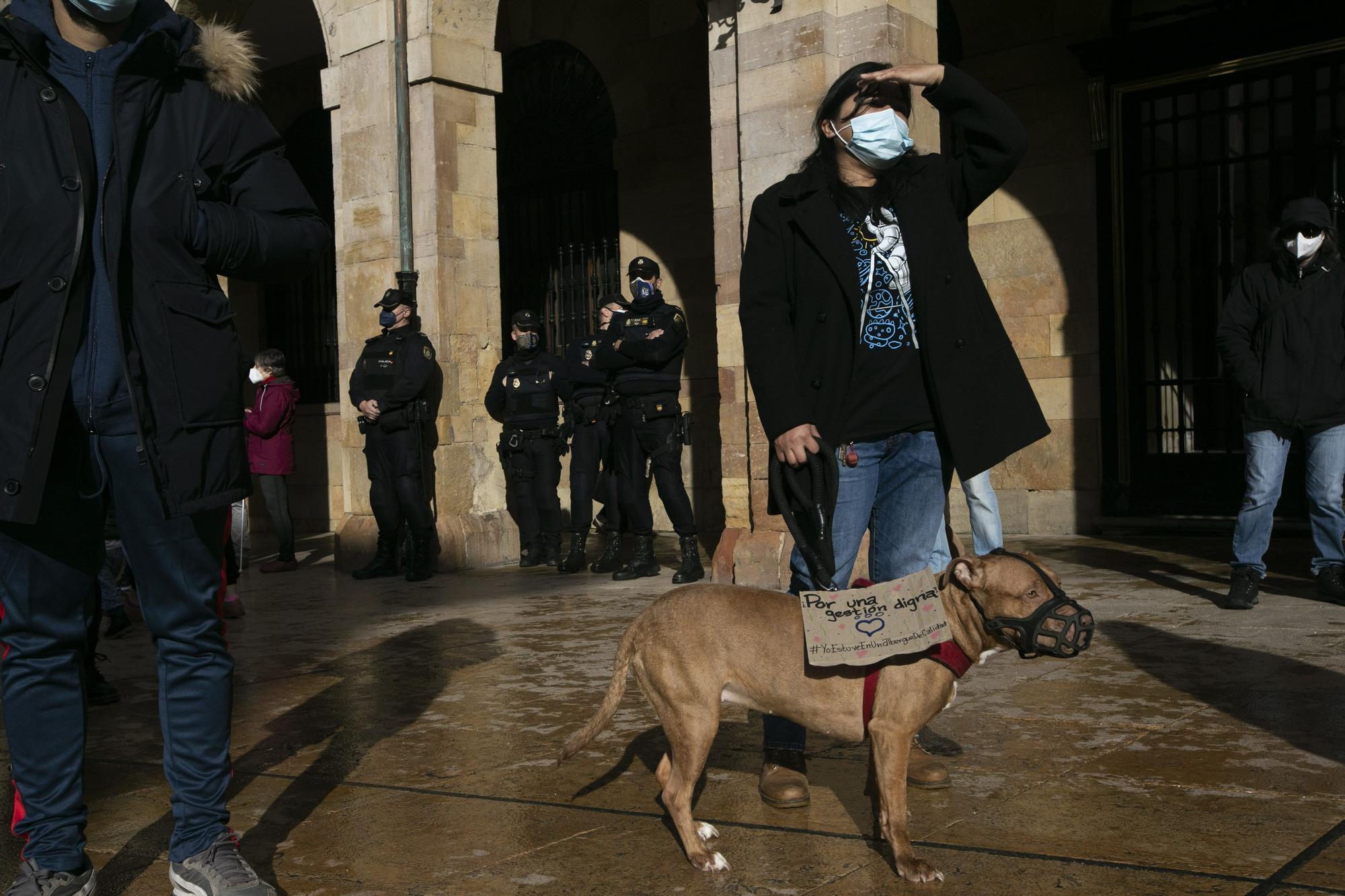 Protesta contra la nueva gestora del albergue de animales de La Bolgachina.