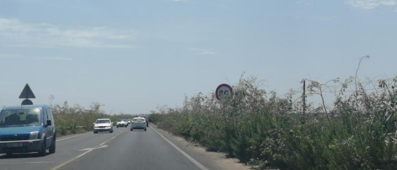 La vegetación dificulta el paso y la visualización de señales.