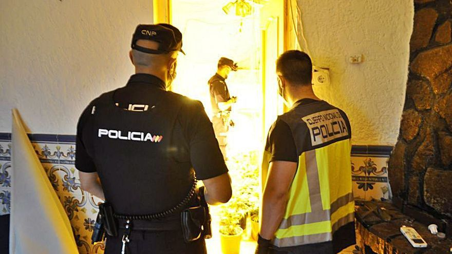 Dieciséis detenidos en Alzira por robos y por cultivar marihuana