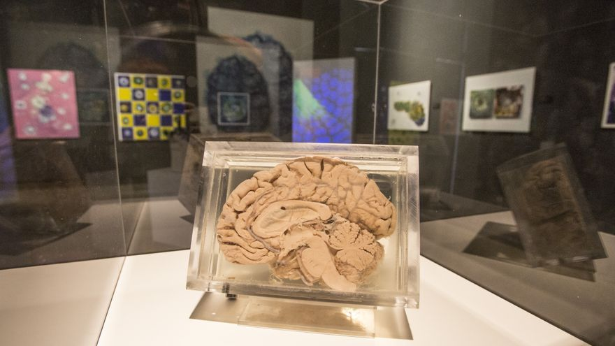 Arte entre el Big Bang y el cerebro