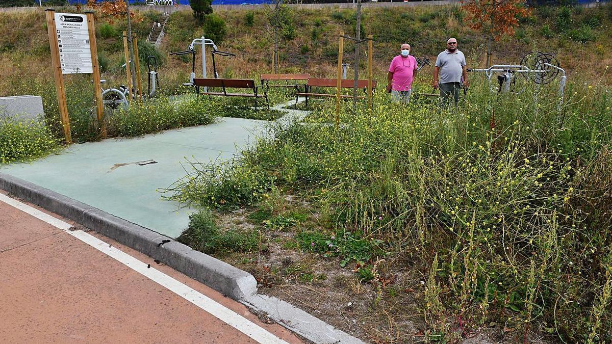 Acera sin accesibilidad para entrar en el parque biosaludable, rodeado de maleza.   | // VÍCTOR ECHAVE