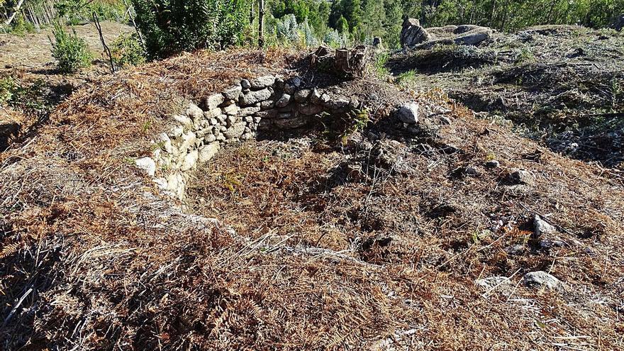 """Descubren un """"foxo do lobo"""" mientras desbrozaban un monte comunal en Ribadetea"""