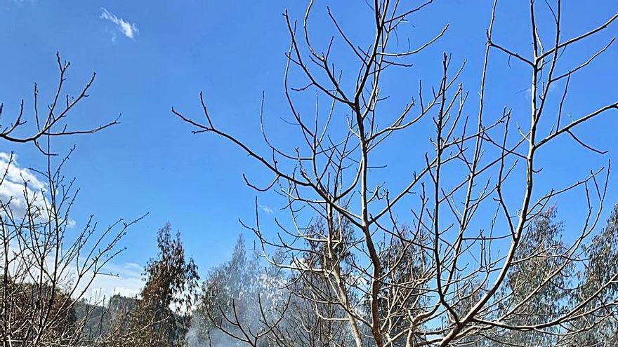 Arden fincas en Coirós tras una quema autorizada