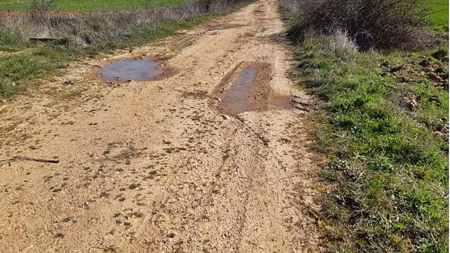 Benavente destina 20.000 euros para la reparación de los caminos Tierra Grande y el de la Vega