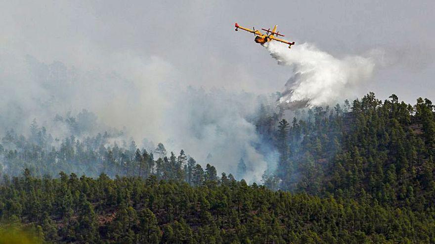 Estabilizado el perímetro y la superficie afectada por el incendio de Tenerife