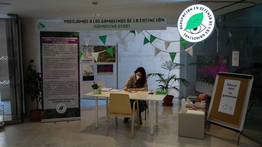 El Etnográfico de Zamora acoge este sábado un taller solidario en inglés y español