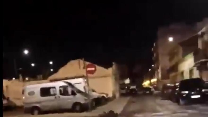 Aparece un jabalí en las inmediaciones de la estación del Cabanyal