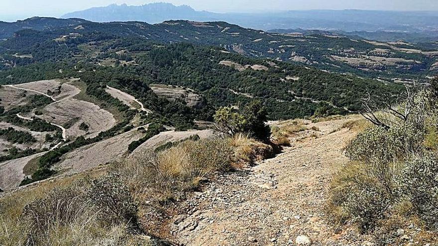 El parc de Sant Llorenç engega un pla per reduir l'erosió del sòl
