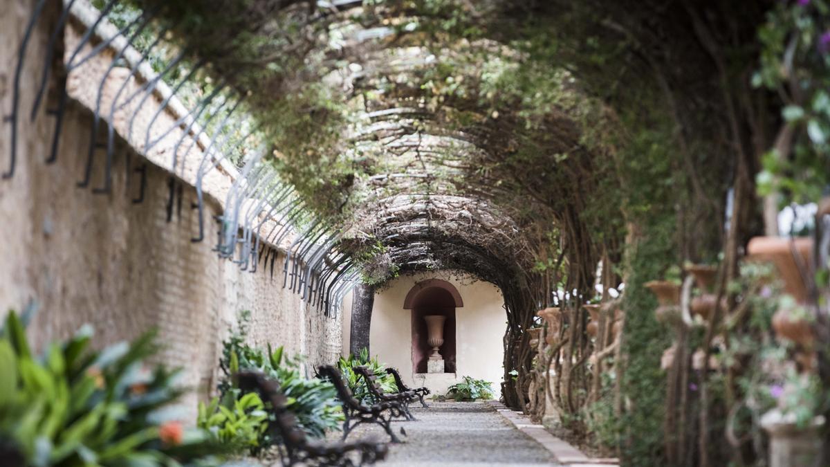 Parques y Jardines de València aprueba Oferta Pública de Empleo con 49 plazas