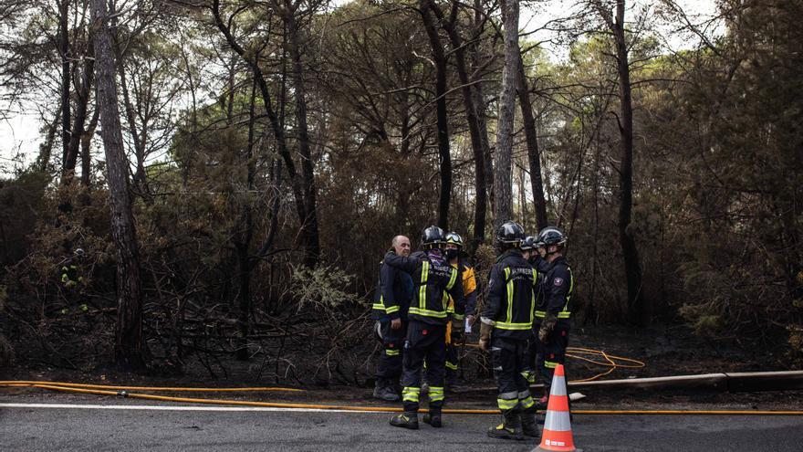 Ibiza ha sufrido 17 incendios que han quemado 2,47 hectáreas hasta agosto