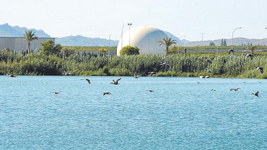 Las depuradoras de Murcia suministran agua a humedales de ocho municipios