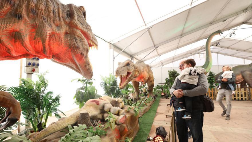 Dinosaurs Tour en Mallorca: guía para no perderse la exposición de dinosaurios animatrónicos