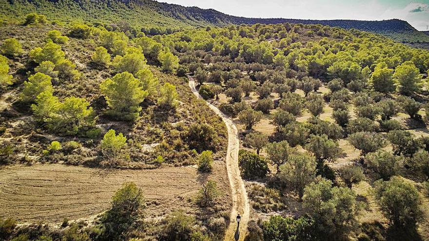 Otra inmobiliaria tira la toalla y desiste del recurso para desproteger Sierra Escalona