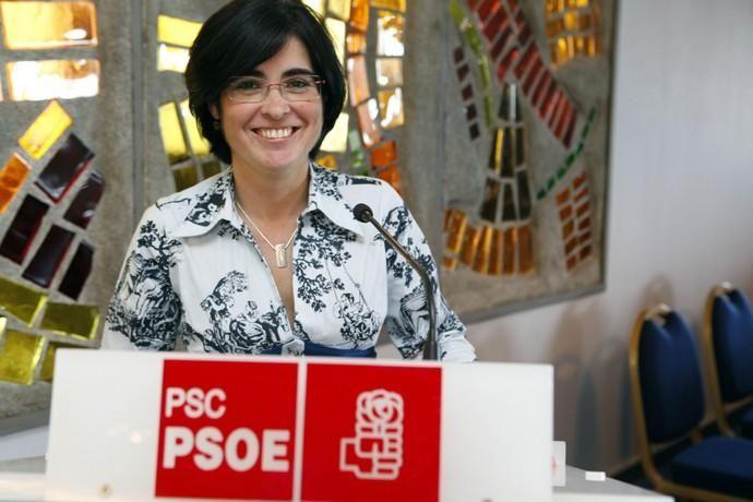 PARTIDOS POLÍTICOS - PSOE