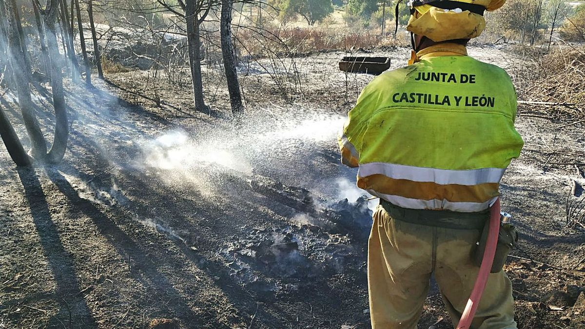 Un efectivo de extinción de incendios trabaja sobre el monte zamorano. | LOZ