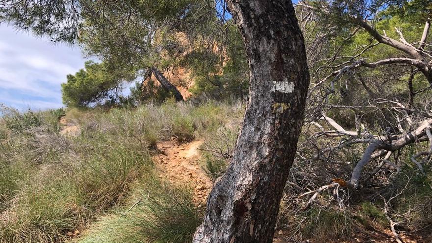 Un parque natural con señalización defectuosa en Benidorm