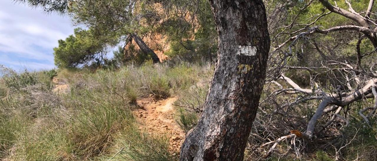El parque natural de Serra Gelada en Benidorm.