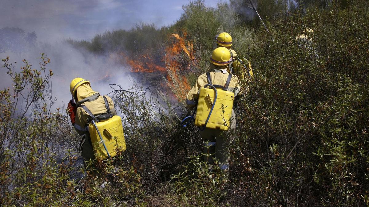 Personal de la Junta apagando un incendio
