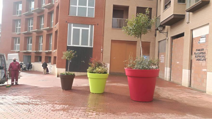 Tres maceteros gigantes adornan el acceso al Edificio Administrativo de El Ferial en Benavente