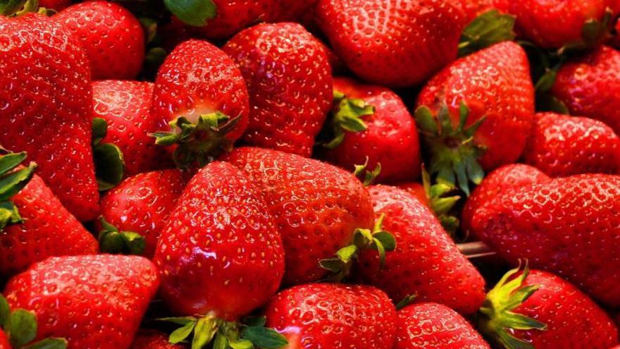 Las fresas, un éxito para la salud