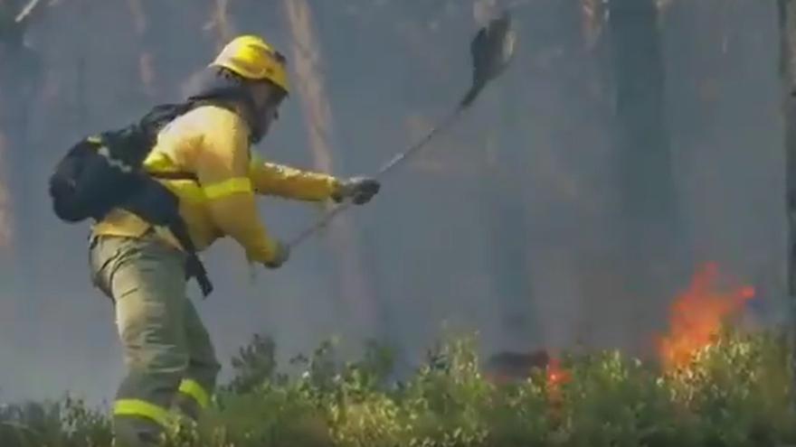 Así trabajan los bomberos del Infoca en el incendio de Sierra Bermeja