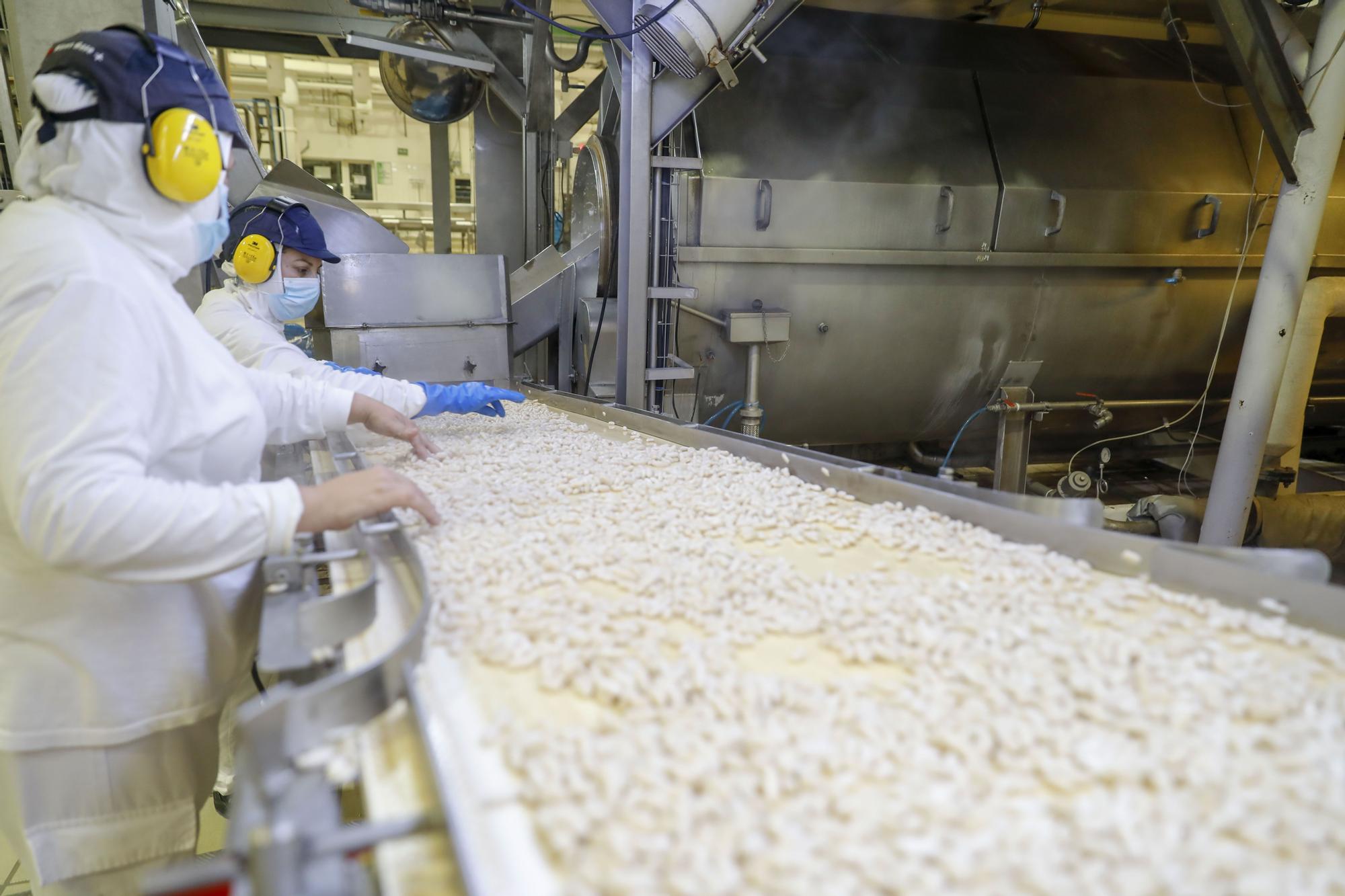 El reino del compango crece en Tremañes: así es por dentro la fábrica de Litoral
