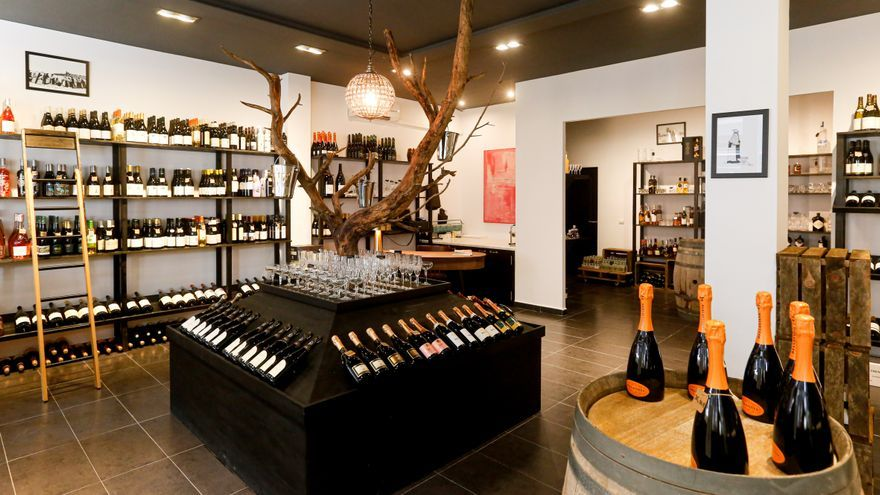 Vinos, ginebra y limonccelo en Ibiza: visita la Bodega SW 17