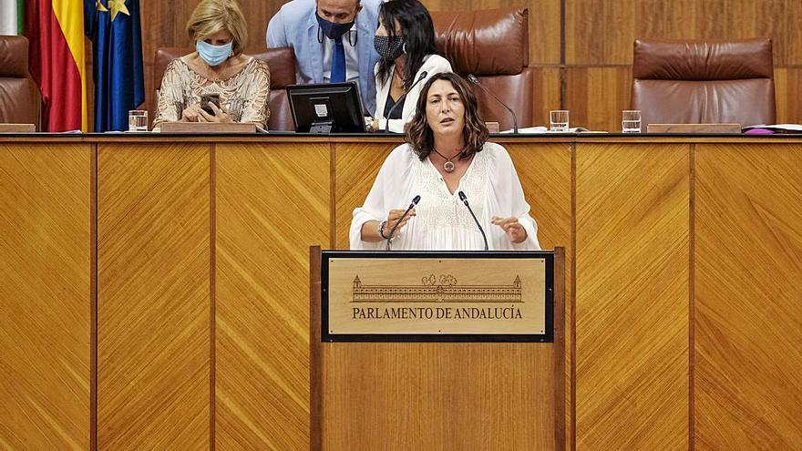 El Parlamento andaluz reclama activar la comisión bilateral
