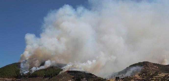 Incendio en Artenara (Gran Canaria)