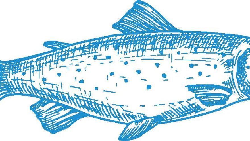 ¿Para qué sirve el salmón? Ocio y negocio de la pesca en Asturias
